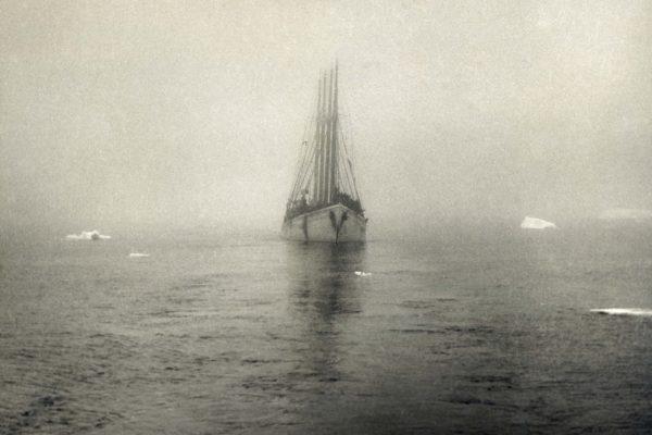 041 Aviz Fog