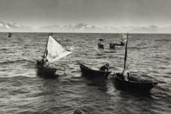 046 Greenland
