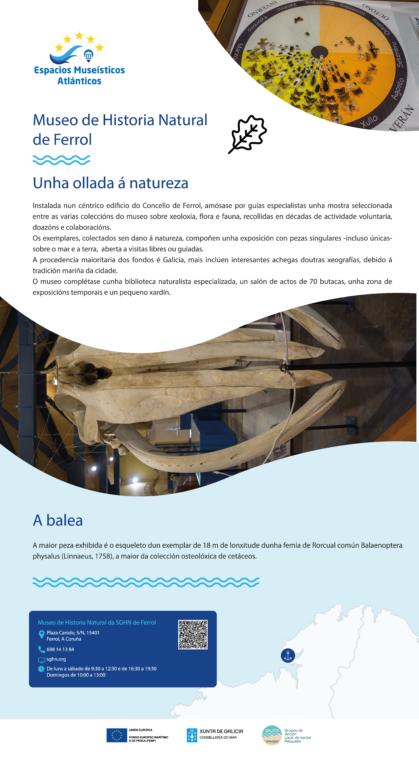 PANELES REMA JAVIER_Mesa de trabajo n32